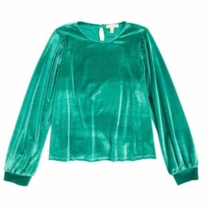 Girls Velour Blouse Holiday Ruffle Sleeve Top NWT